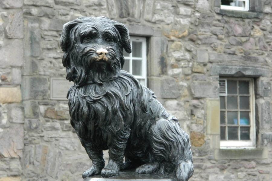 Bobby chien fidèle
