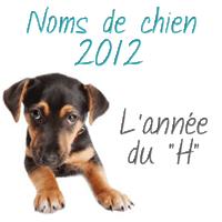 Les noms de chien 2012 : l'année du