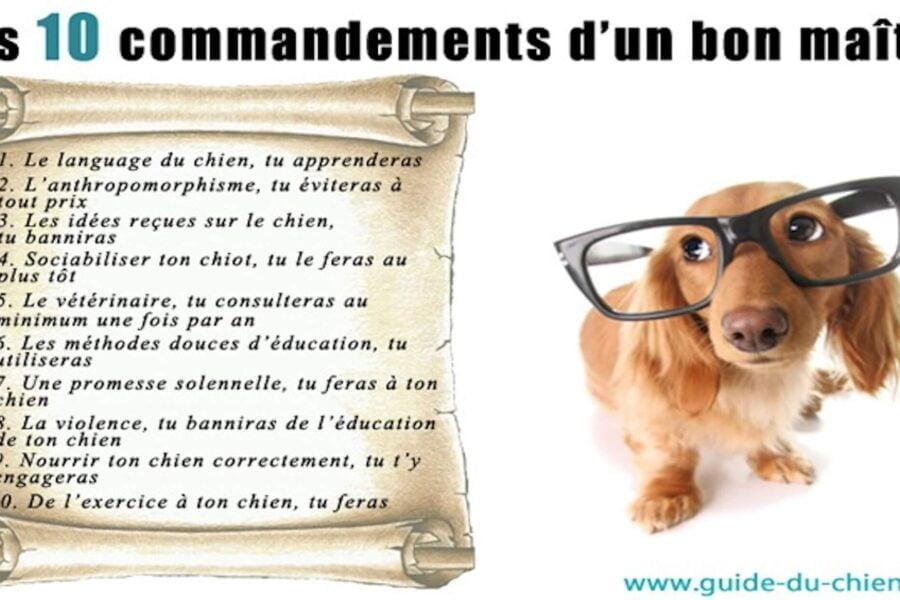 10-commandements-dun-bon-maitre
