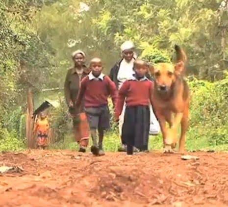 Oscar emmène les enfants à l'école