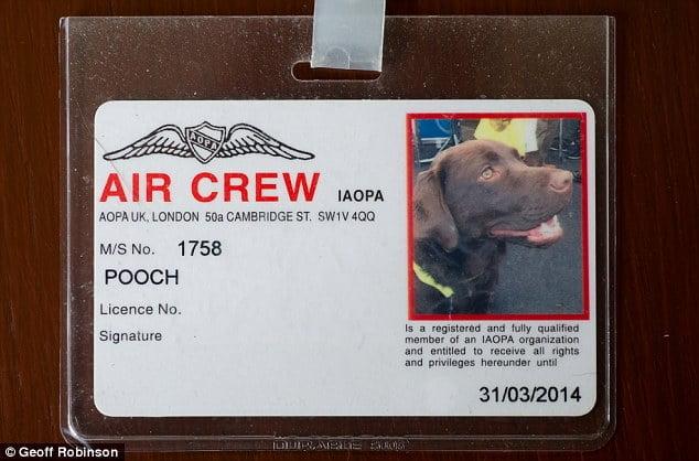 Callie titulaire de sa propre licence d'aviation
