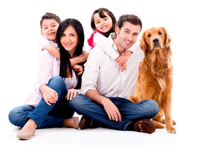le pet sitting la solition id ale pour faire garder son chien dans une ambiance familiale. Black Bedroom Furniture Sets. Home Design Ideas