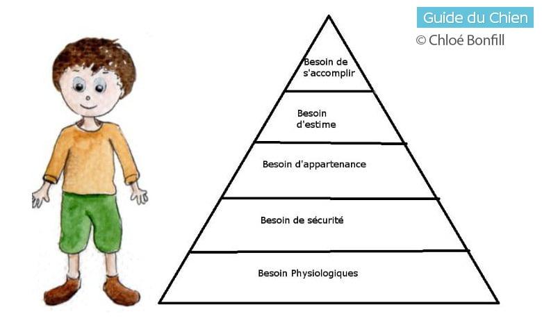 pyramide de Maslow humain